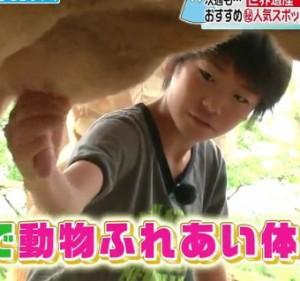 kobayashi_youjyu (14)